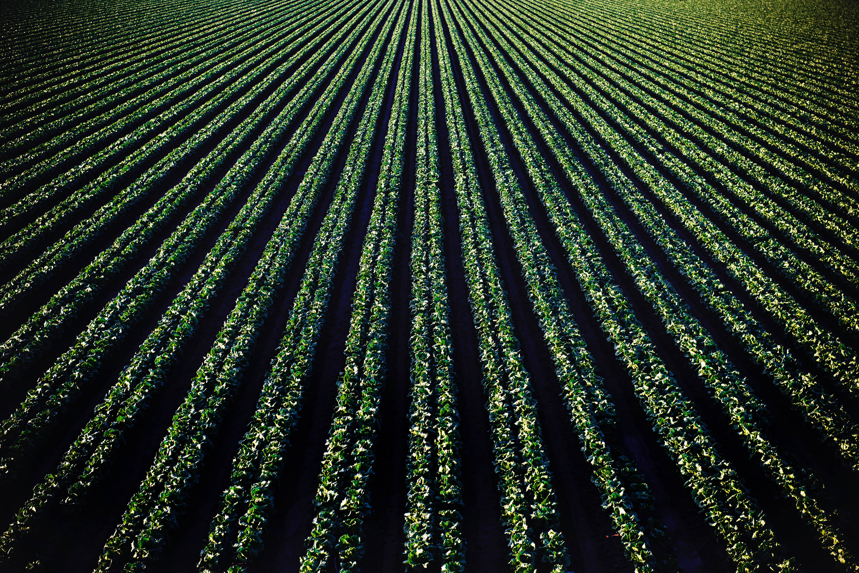 НАТУРА 2000: стимул или пречка за фермерите?
