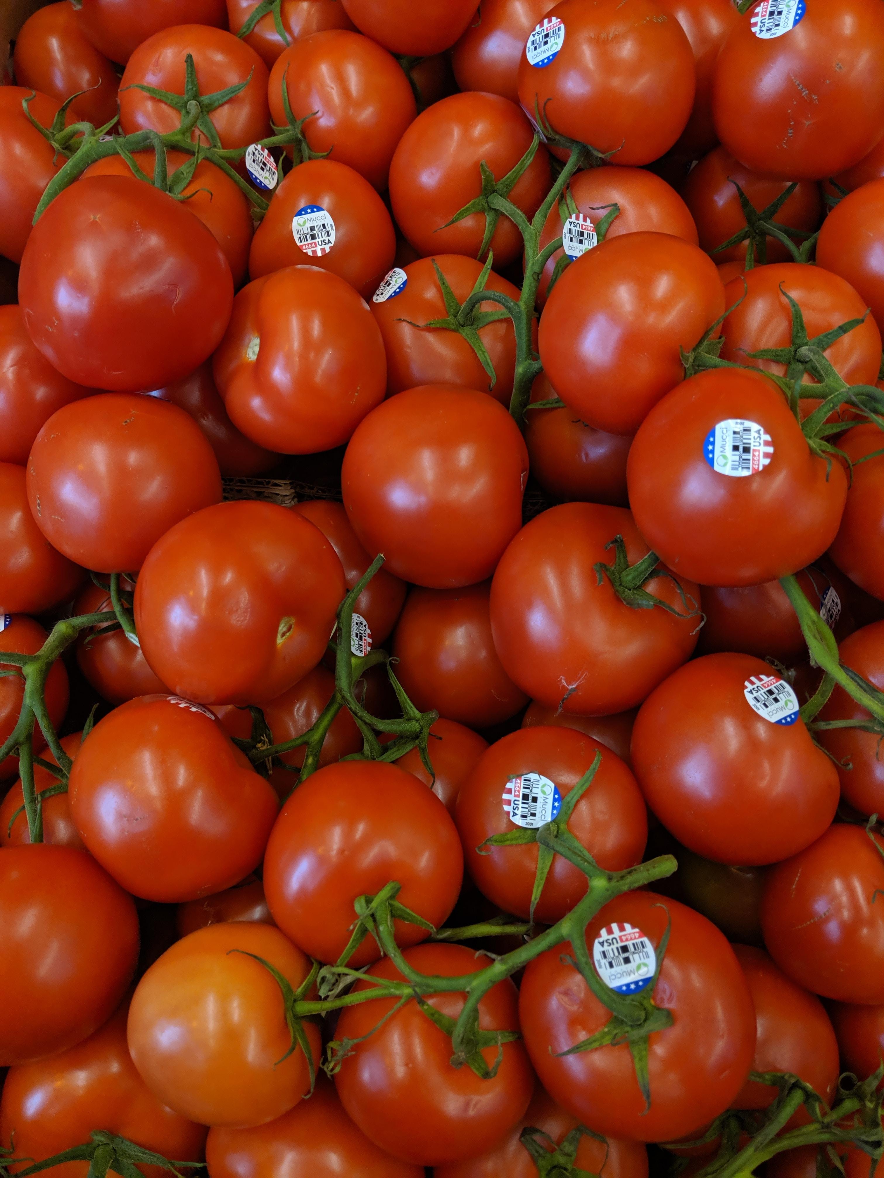 Прогноза: 14 хил. тона повече родни домати