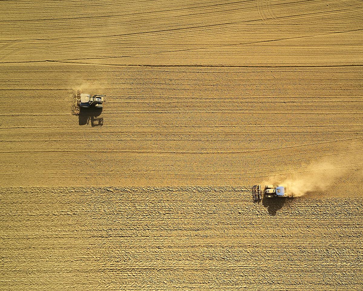 НСИ: Изкупните цени в селското стопанство се повишиха